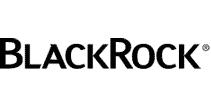 BlackRock LT Municipal Advantage Trust logo