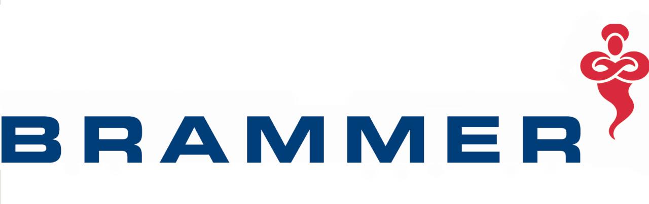 Brammer plc logo