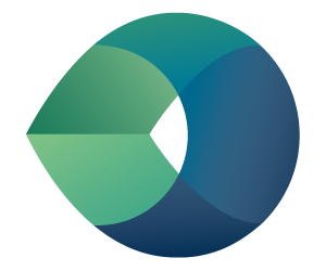 Camtek LTD. logo