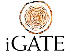 IGATE Corp logo