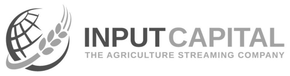 Input Capital Corp logo