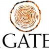iGATE Given New $55.00 Price Target at Maxim Group (IGTE)