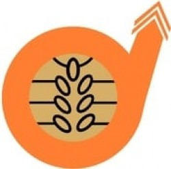 Amira Nature Foods logo