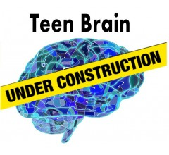 Image for NIH Study Officially Warns About Irreversible Effects of Screen Time on the Adolescent Brain