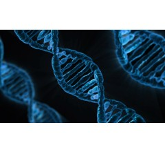 Image for Scientists Discover New Alzheimer's Genes