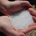 Microplastics Removal Idea Wins Young Scientist $50,000