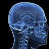 Video Game May Help Suppress Schizophrenia Symptoms