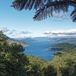 New Zealand Makes Big Carbon Neutral Pledge