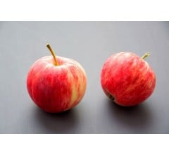 Image for Two Apples Daily Could Prevent Heart Attack