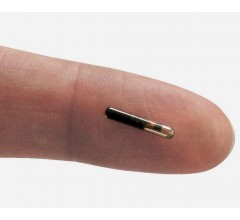 Image for Swedish Start-Up Implants Employees with Microchips
