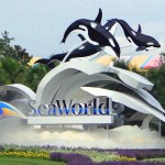 Federal Investigations Into SeaWorld Revealed In SEC Filing