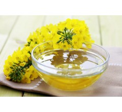 Image for Researchers Find Link Between Canola Oil and Dementia