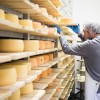 Cheese Stockpile in America Reaches All-Time High