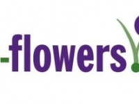 1-800-Flowers.Com (NASDAQ:FLWS) Issues FY 2020 Pre-Market Earnings Guidance