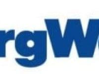 Huntington National Bank Has $39,000 Stock Holdings in BorgWarner Inc. (NYSE:BWA)