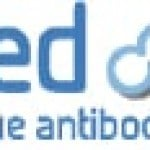 Affimed (NASDAQ:AFMD) Stock Price Up 8.4% Following Analyst Upgrade