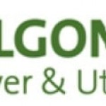 Algonquin Power & Utilities Corp (NYSE:AQN) Expected to Announce Quarterly Sales of $439.87 Million