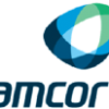 Massachusetts Financial Services Co. MA Sells 17,717 Shares of Amcor plc (NYSE:AMCR)
