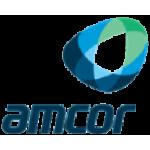 Critical Survey: Conversion Labs (NASDAQ:CVLB) & Amcor (NYSE:AMCR)