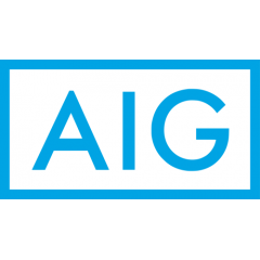 Nuveen Asset Management LLC Purchases 125,767 Shares of American International Group, Inc. (NYSE:AIG)