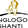 AngloGold Ashanti  Shares Gap Up to $11.42