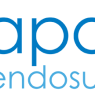 Apollo Endosurgery Inc  Expected to Announce Quarterly Sales of $13.25 Million