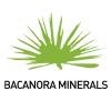 Bacanora Lithium (BCN) Trading 11.7% Higher