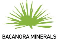 Bacanora Lithium's (BCN) Buy Rating Reaffirmed at VSA Capital