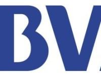 Banco Bilbao Vizcaya Argentaria SA (NYSE:BBVA) Shares Sold by Welch Group LLC