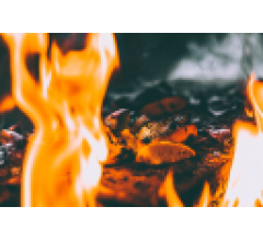 Image for BBQ Holdings, Inc. (NASDAQ:BBQ) Shares Acquired by Dimensional Fund Advisors LP
