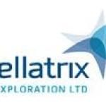 Bellatrix Exploration (TSE:BXE)  Shares Down 5%