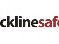 Blackline Safety Corp (CVE:BLN) Director Acquires C$10,500.00 in Stock