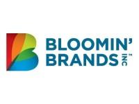 Bloomin' Brands (NASDAQ:BLMN) PT Raised to $17.00