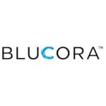 Lufax (NYSE:LU) & Blucora (NASDAQ:BCOR) Financial Survey