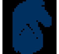 Image for DG Capital Management LLC Raises Stock Position in Blueknight Energy Partners, L.P. (NASDAQ:BKEP)