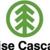 $0.45 EPS Expected for Boise Cascade L.L.C.  This Quarter