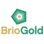 Brio Gold (TSE:BRIO) Trading Down 3.5%