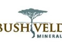 """Peel Hunt Reaffirms """"Buy"""" Rating for Bushveld Minerals (LON:BMN)"""