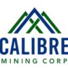 Calibre Mining (TSE:CXB) PT Raised to C$2.75 at Raymond James