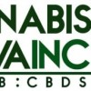 Sadia P. Barrameda Sells 72,050 Shares of Cannabis Sativa Inc  Stock