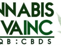 Brad E. Herr Sells 47,205 Shares of Cannabis Sativa Inc (OTCMKTS:CBDS) Stock