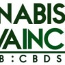Cannabis Sativa Inc  Sees Significant Growth in Short Interest