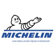 Image for Compagnie Générale des Établissements Michelin Société en commandite par actions (OTCMKTS:MGDDF) Sees Significant Drop in Short Interest