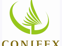 Conifex Timber (TSE:CFF) PT Raised to C$3.00