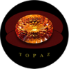 Topaz Coin Trading Down 24.8% Over Last Week (TOPAZ)