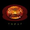 Topaz Coin Price Down 24.8% This Week (TOPAZ)