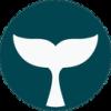 BelugaPay (CRYPTO:BBI) Achieves Market Capitalization of $130,580.00