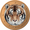 Tigercoin  Trading Up 33.7% This Week