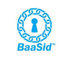 Image for BaaSid (BAAS) Market Cap Achieves $16.54 Million