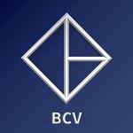 BitCapitalVendor (BCV) Price Down 11.4% This Week